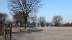 近藤沼公園冬の景色2
