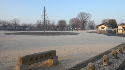 近藤沼公園冬の景色1