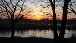 早朝の風景1